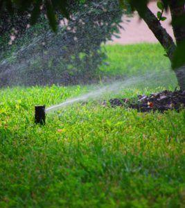 sprinklerpics06, sprinkler repair,